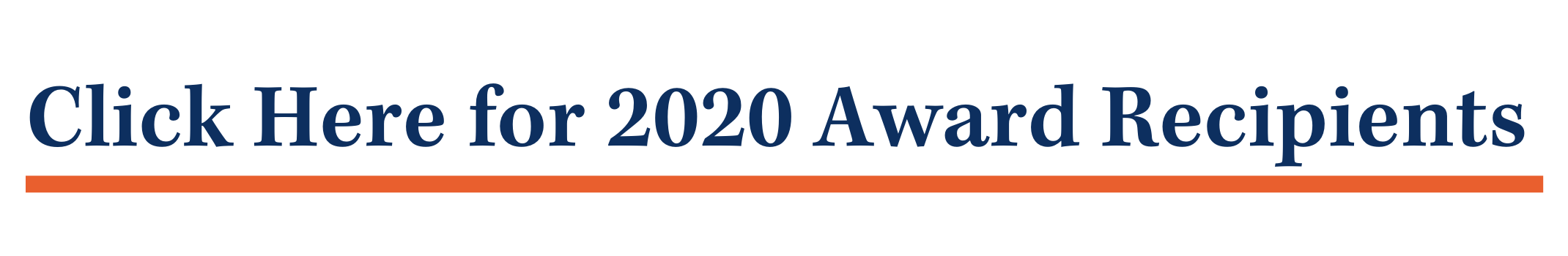 NPM 2020 award winners banner (3)